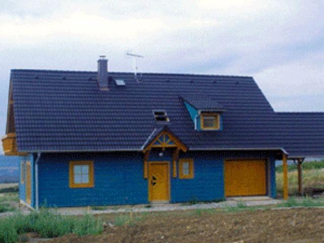 Einfamilienhaus Tanne - Seitenansicht