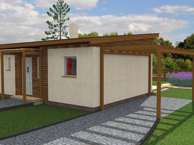 Haus mit Pultdach Pult 01 - Hauseingang und Carport