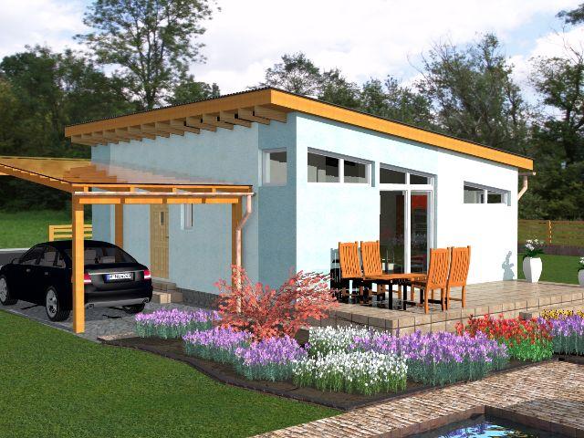 Haus mit Pultdach Pult 02 - Gartenansicht Terrasse und Carport