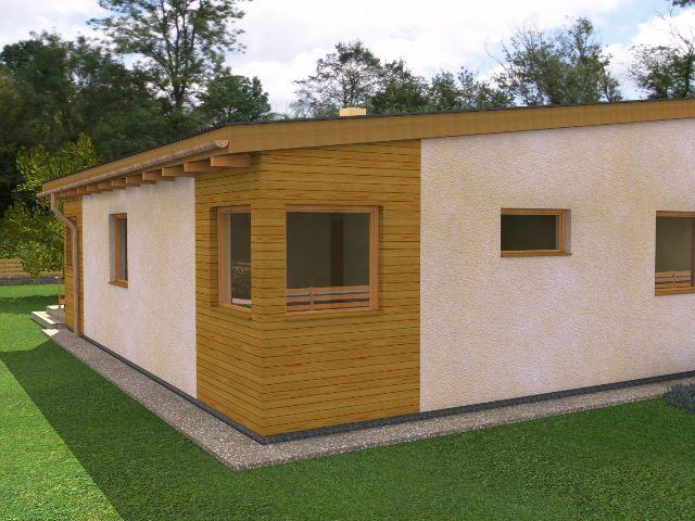 Haus mit Pultdach Pult 04 - Seitenansicht